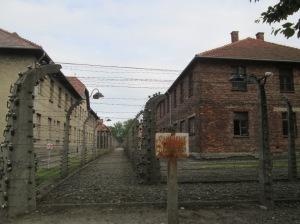 Há uma série de construções parecidas com casas em Auschwitz
