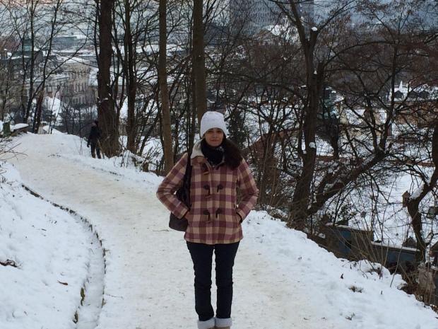 Liubliana Eslovênia Neve Frio