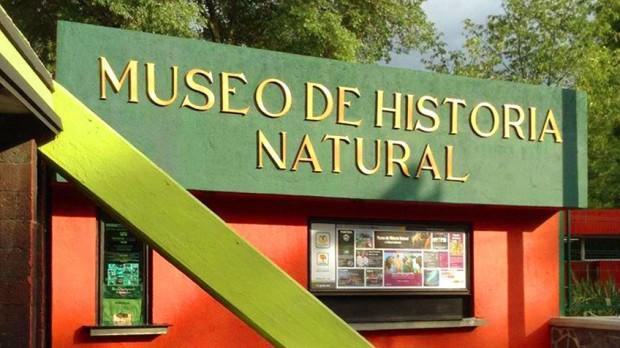 Museu de História Natural e Cultura Ambiental México