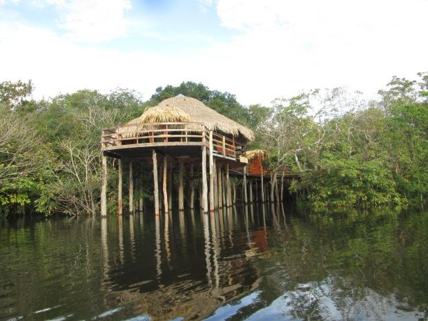 Suíte Panorâmica do Juma Amazon Lodge Bangalô Guia Aleatório de Turismo Hotel de Selva