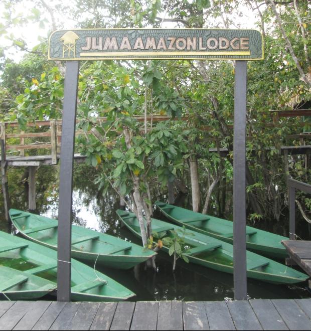 Juma Amazon Lodge Hotel de Selva Guia Aleatório de Turismo