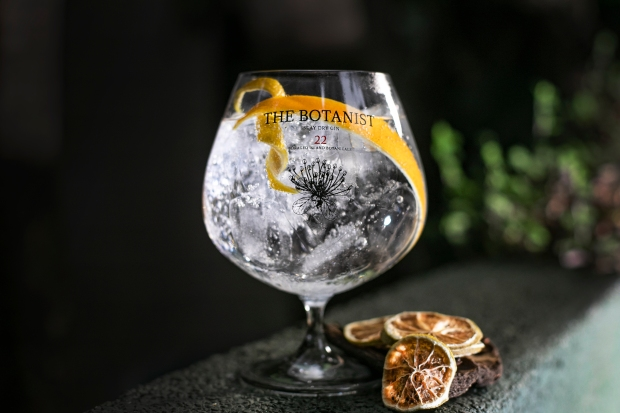 The Botanist G&T - Citric Heart (5)